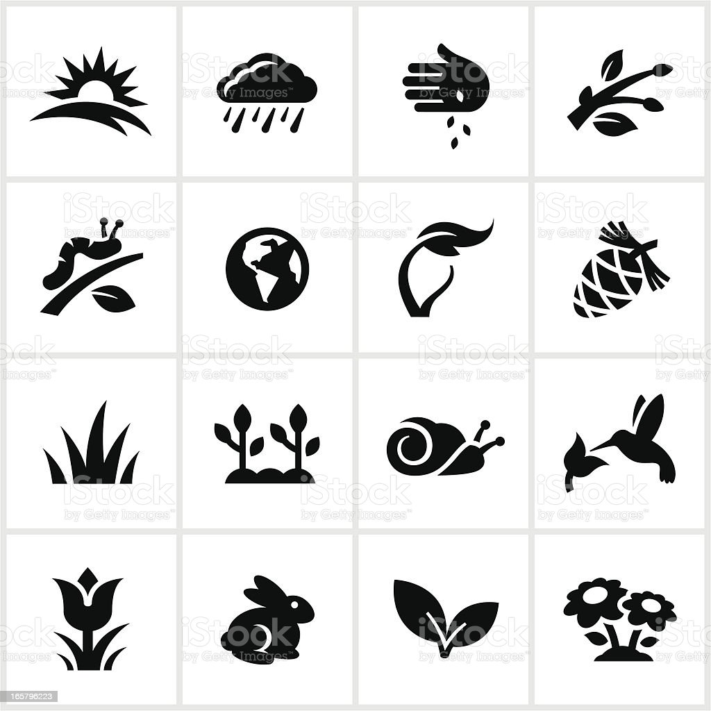 Black Springtime Icons vector art illustration