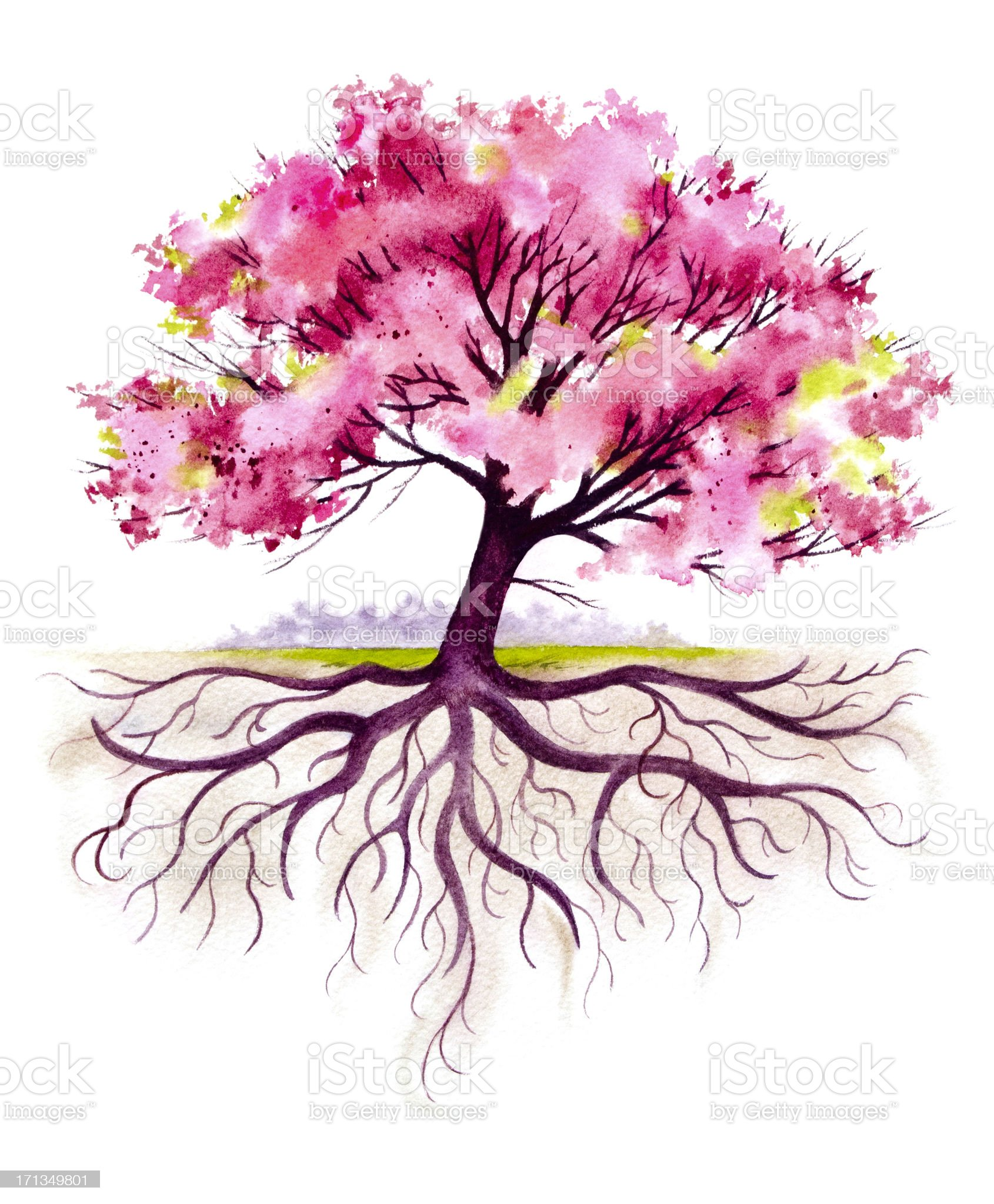 Blooming Family Tree with Roots royalty-free stock vector art