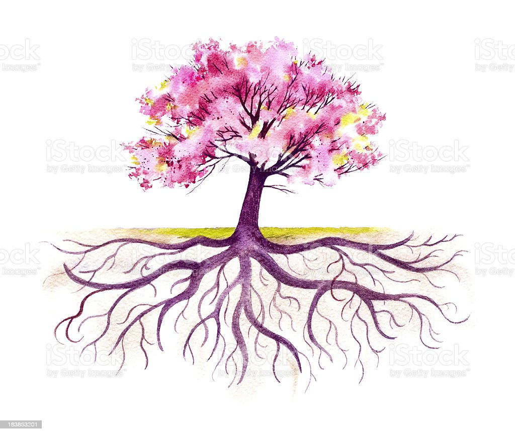 Blooming Tree With A Strong Root System vector art illustration
