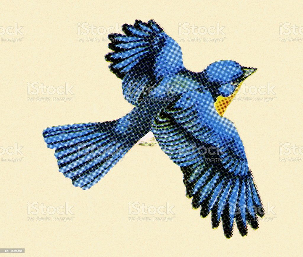 Blue Bird Flying vector art illustration