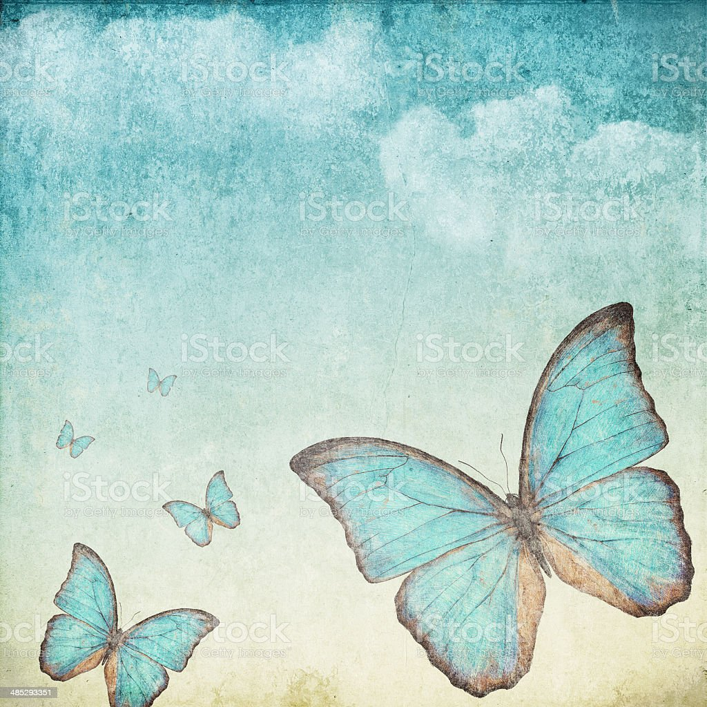 blue butterfly vector art illustration