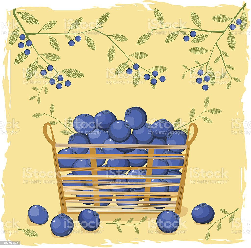 Blueberries In Small Straw Basket royalty-free stock vector art