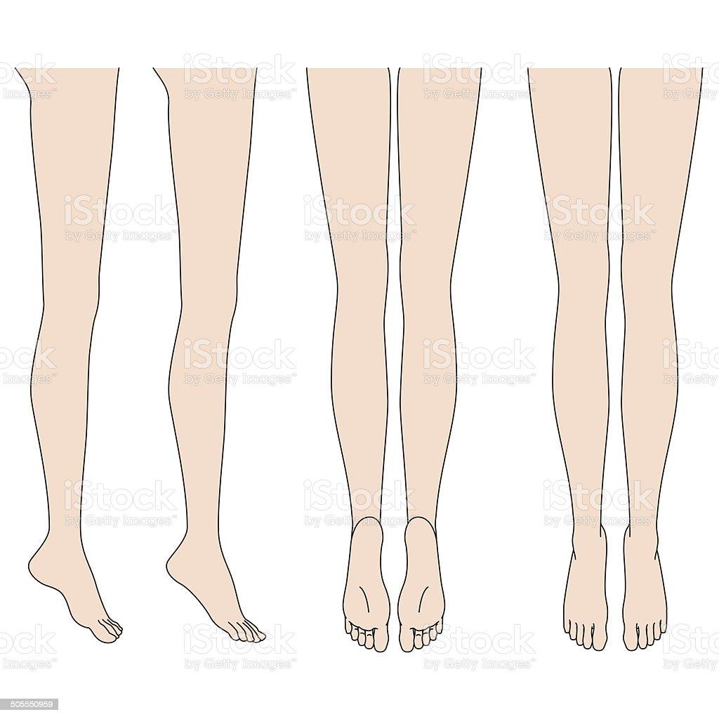 Body Parts. Legs. Foot vector art illustration