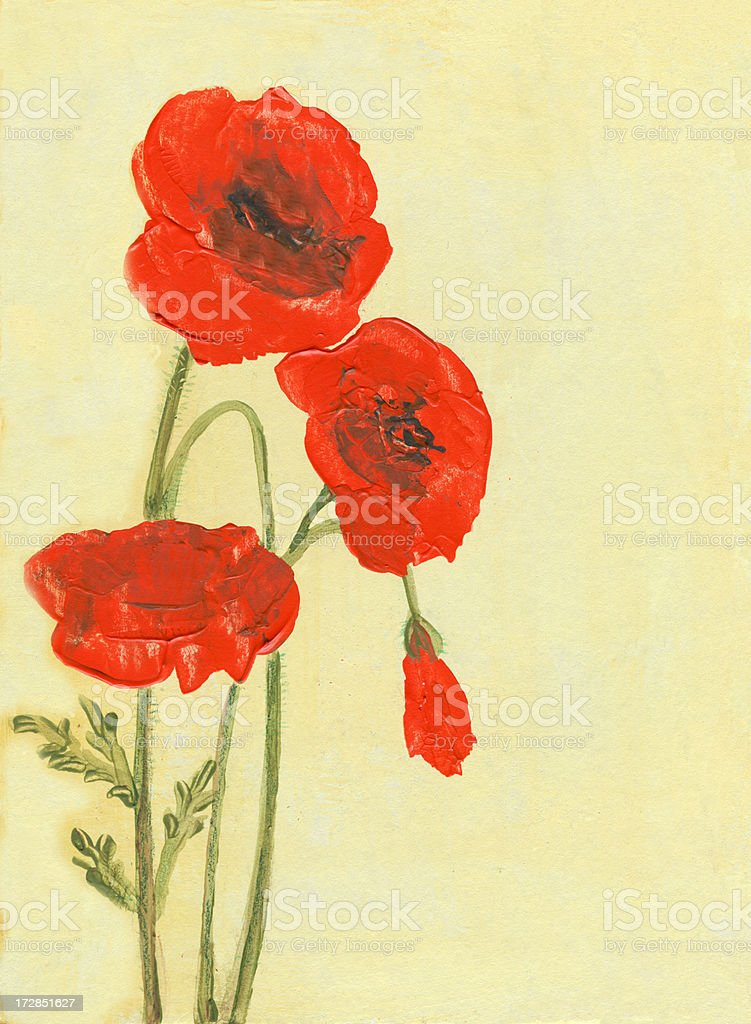 Grenze mit poppies Lizenzfreies vektor illustration