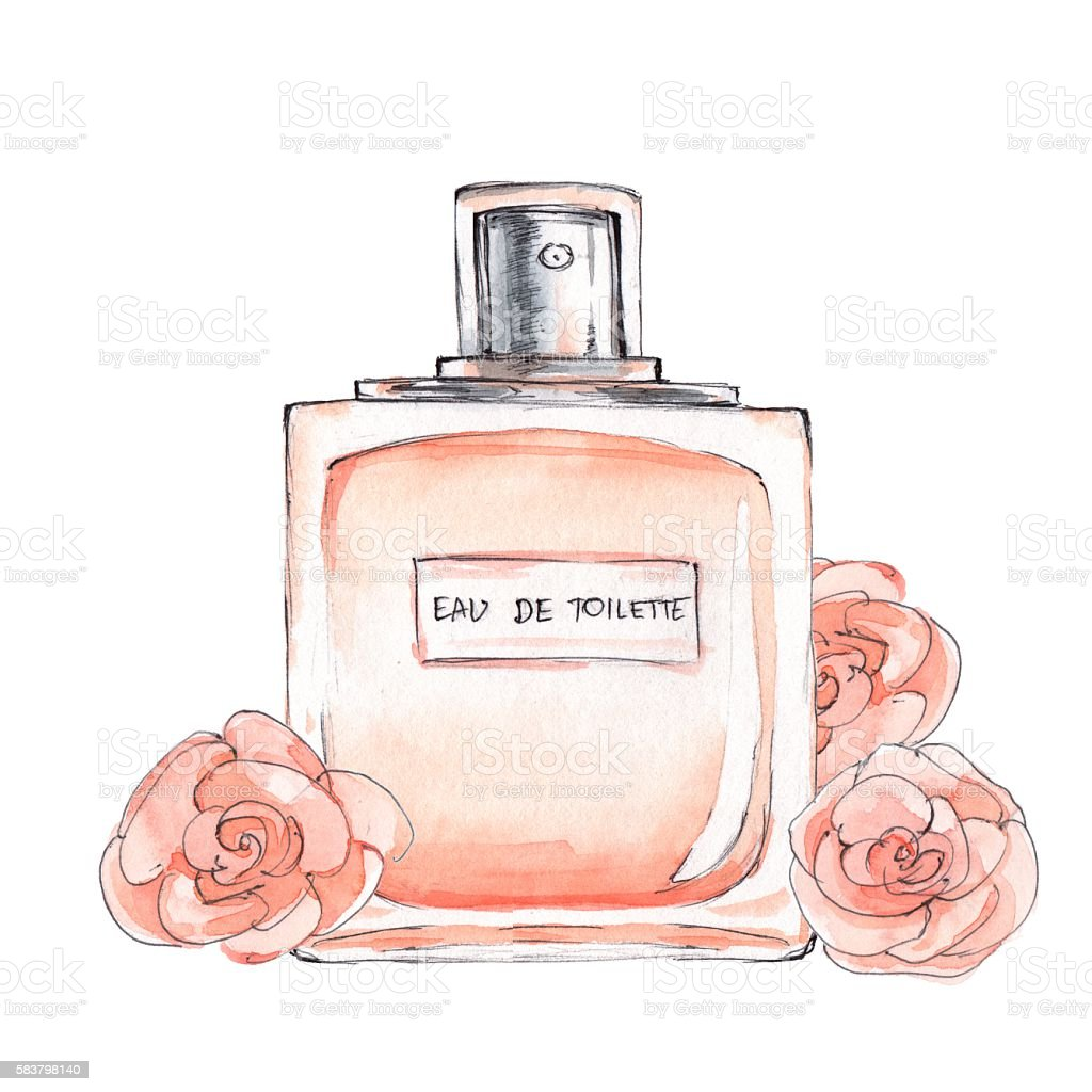 Bottle of perfume. Ink and watercolor sketch 5 vector art illustration