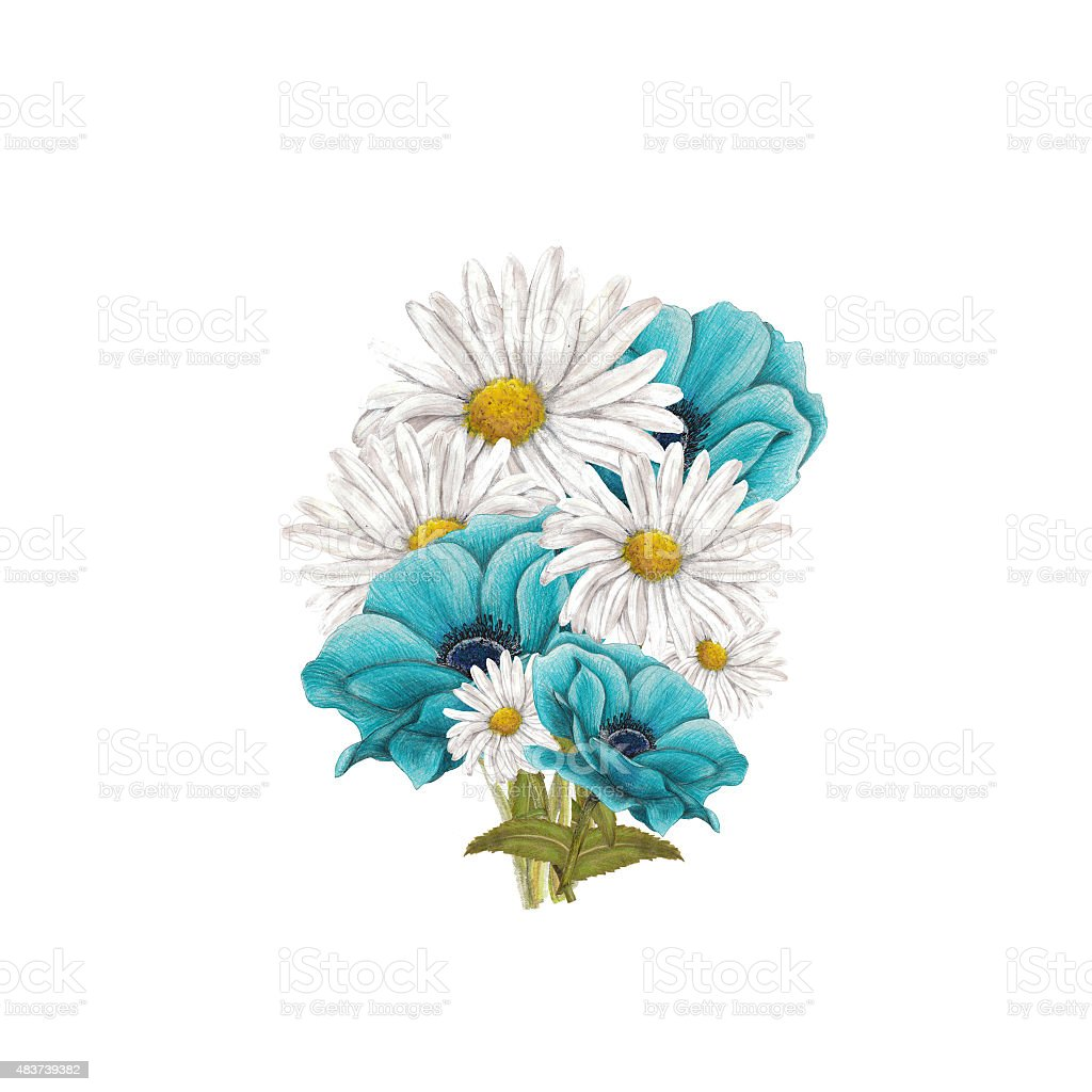 Bouquet of blue anemones and chamomile vector art illustration
