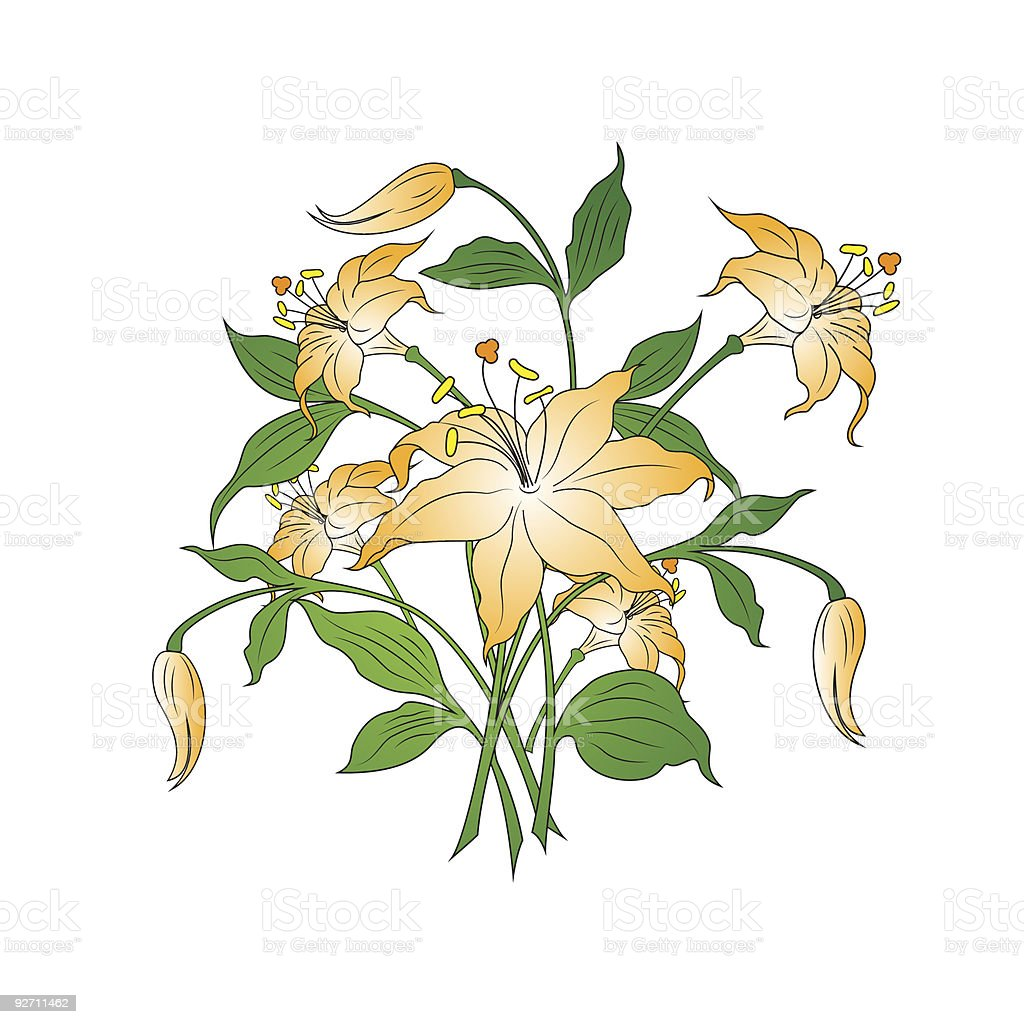 bouquet of flowers in simple colors, white background, vector illustration royalty-free stock vector art