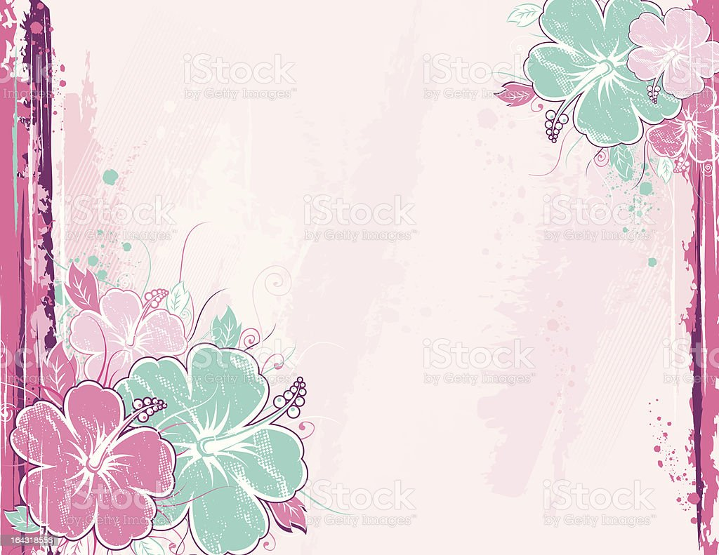 bouquet of hibiscus on pink background royalty-free stock vector art