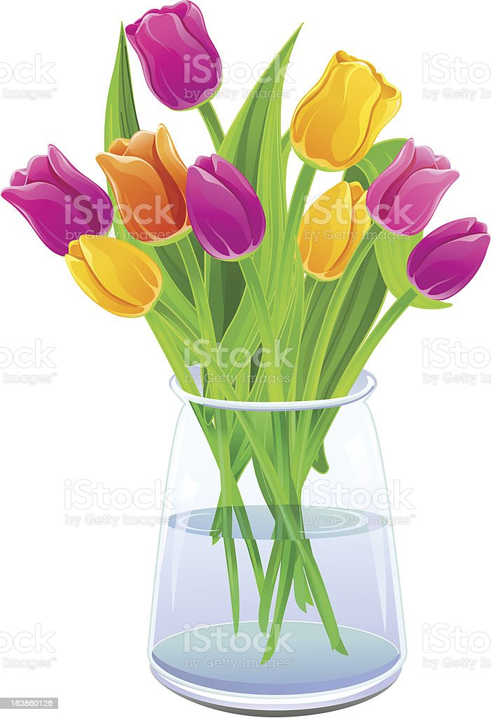 Bouquet of multi-colored tulips in a vase royalty-free stock vector art