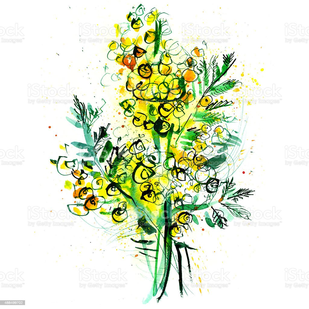 bouquet of yellow mimosa on a white background vector art illustration