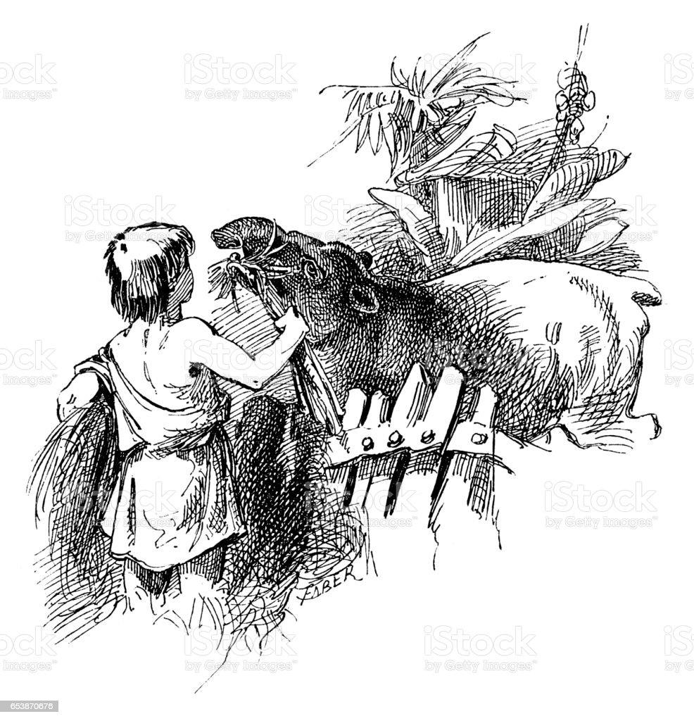 Boy feeding Tapir vector art illustration