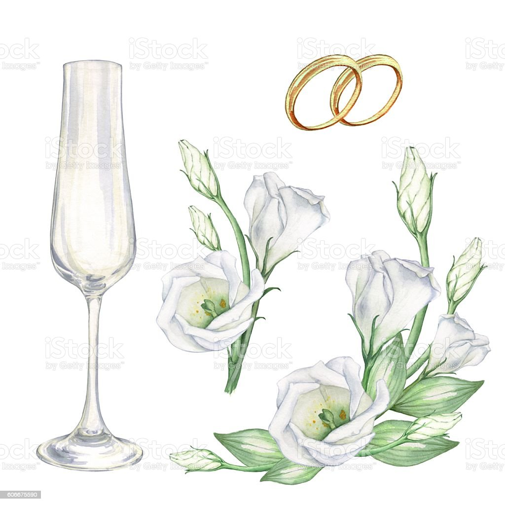 Bridal set white with flowers, wedding rings and glasses. vector art illustration