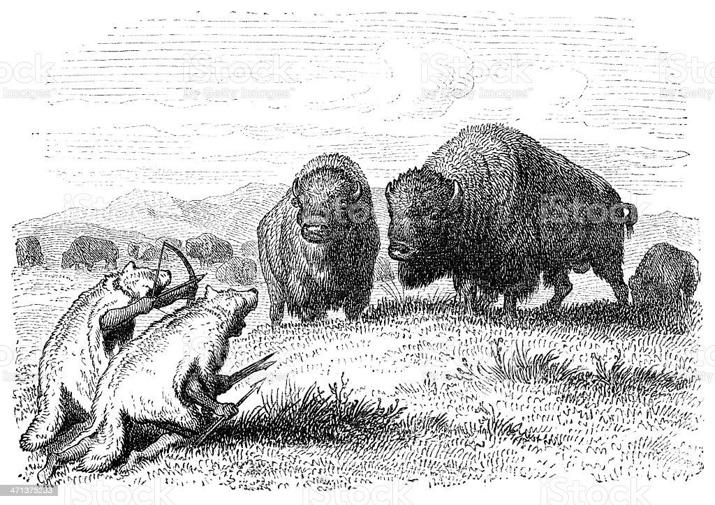 Buffalo Hunt vector art illustration