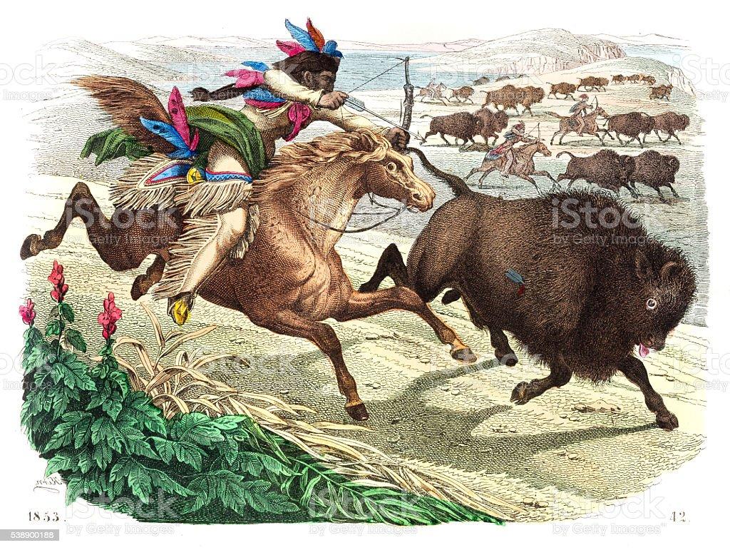 Buffalo hunting engraving 1853 vector art illustration