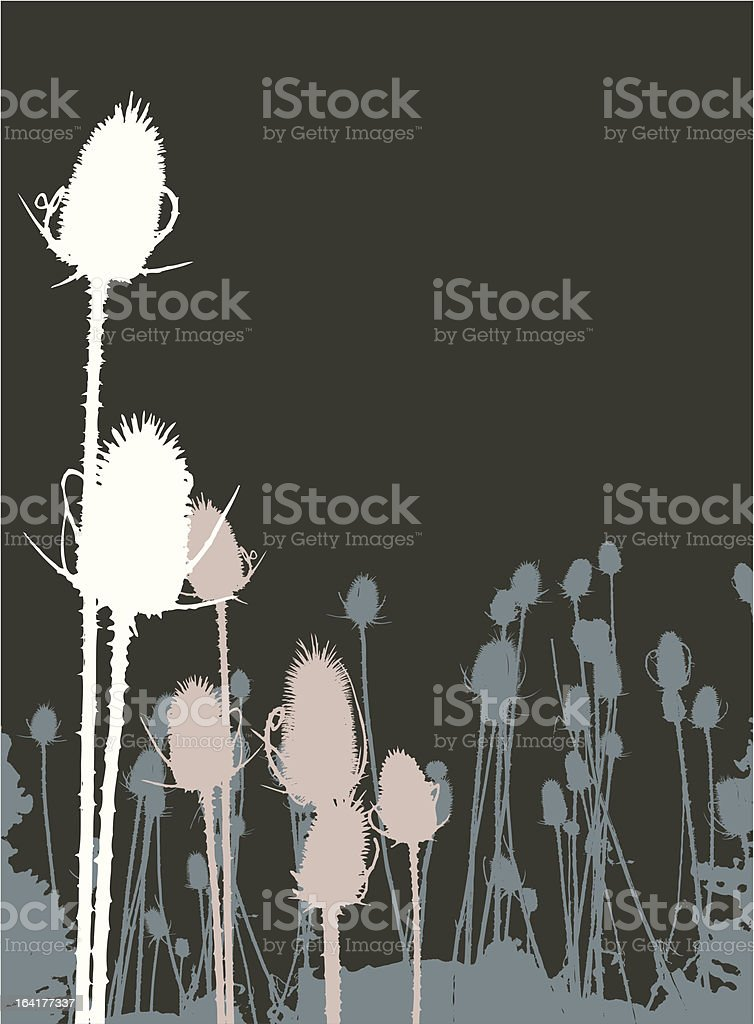 Bull Thistle on Brown vector art illustration