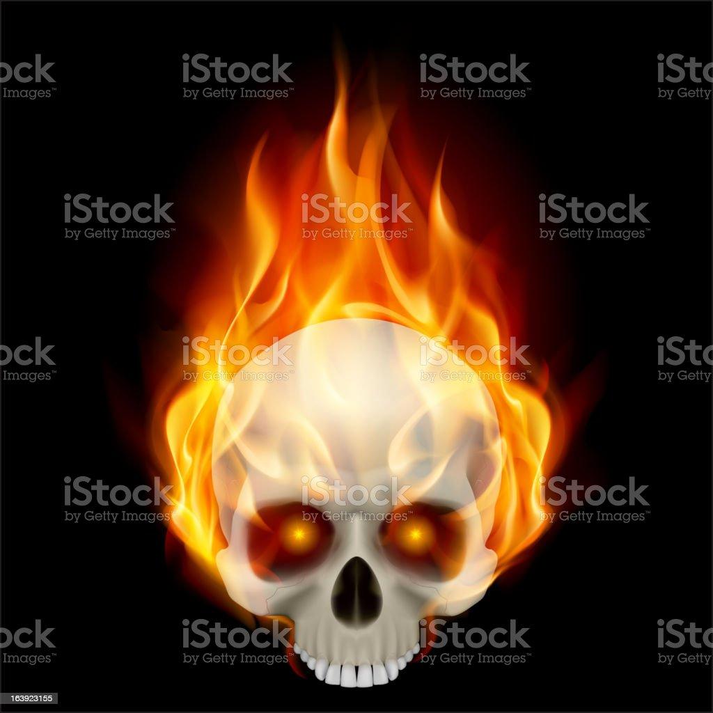 Burning skull in hot flame. vector art illustration