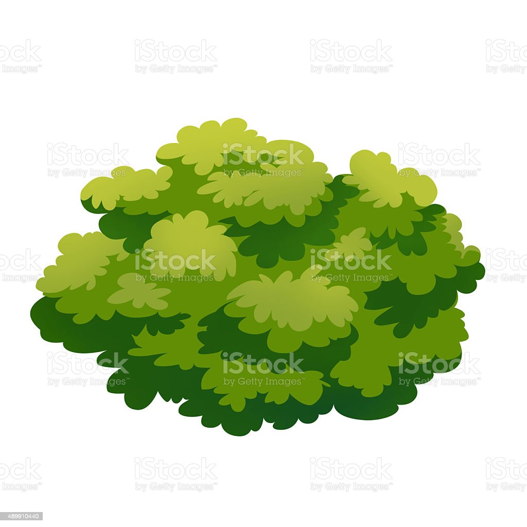 Bush vector art illustration