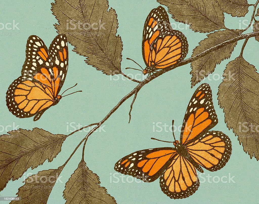 Butterflies and Leaves vector art illustration