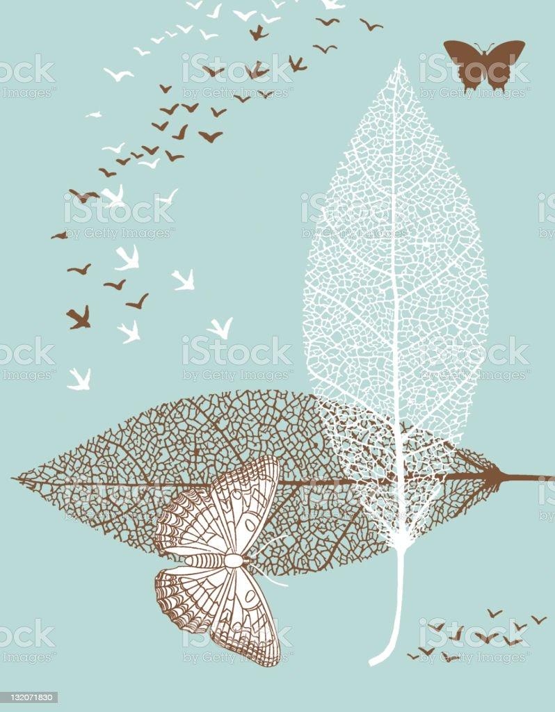 Butterflies; Leaves; Birds vector art illustration