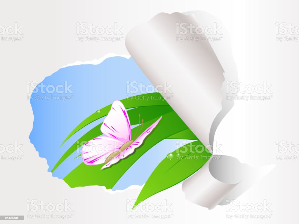 butterfly sitting on green grass royalty-free stock vector art