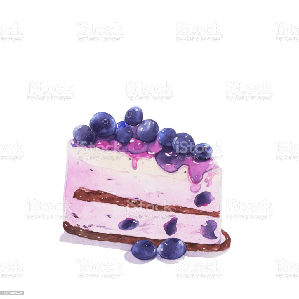 Cake, Watercolor painting. vector art illustration