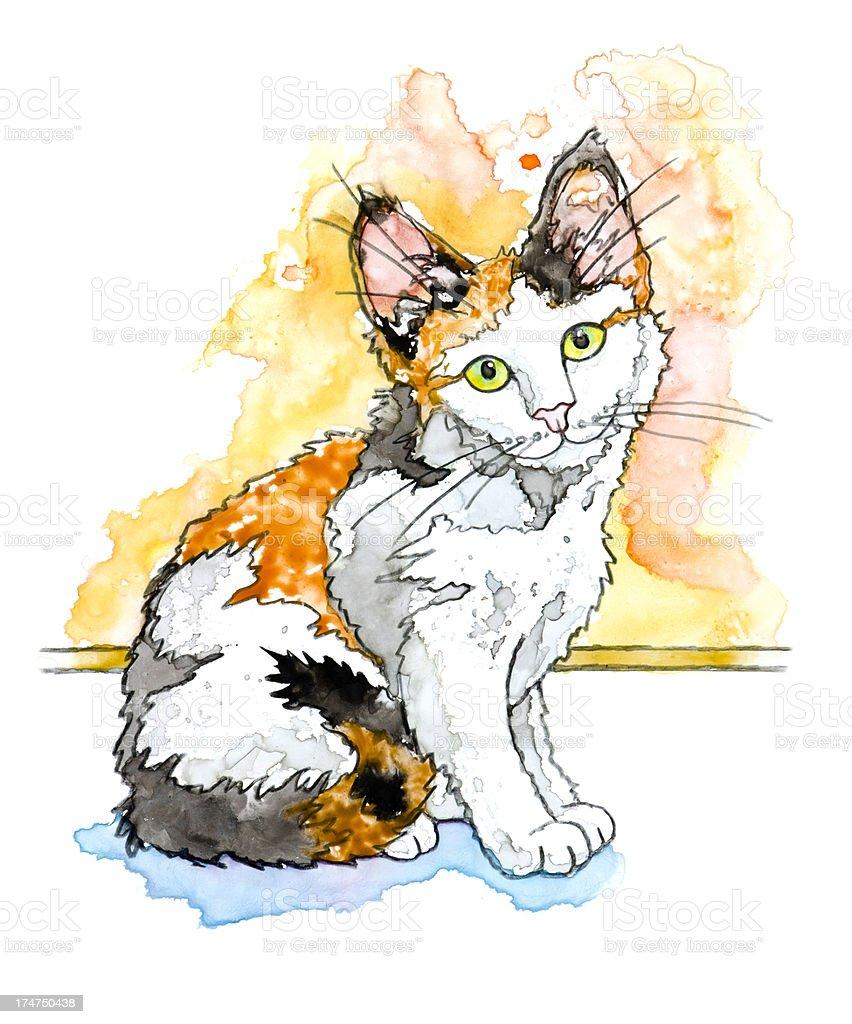 Calico Kitten Illustration on White vector art illustration