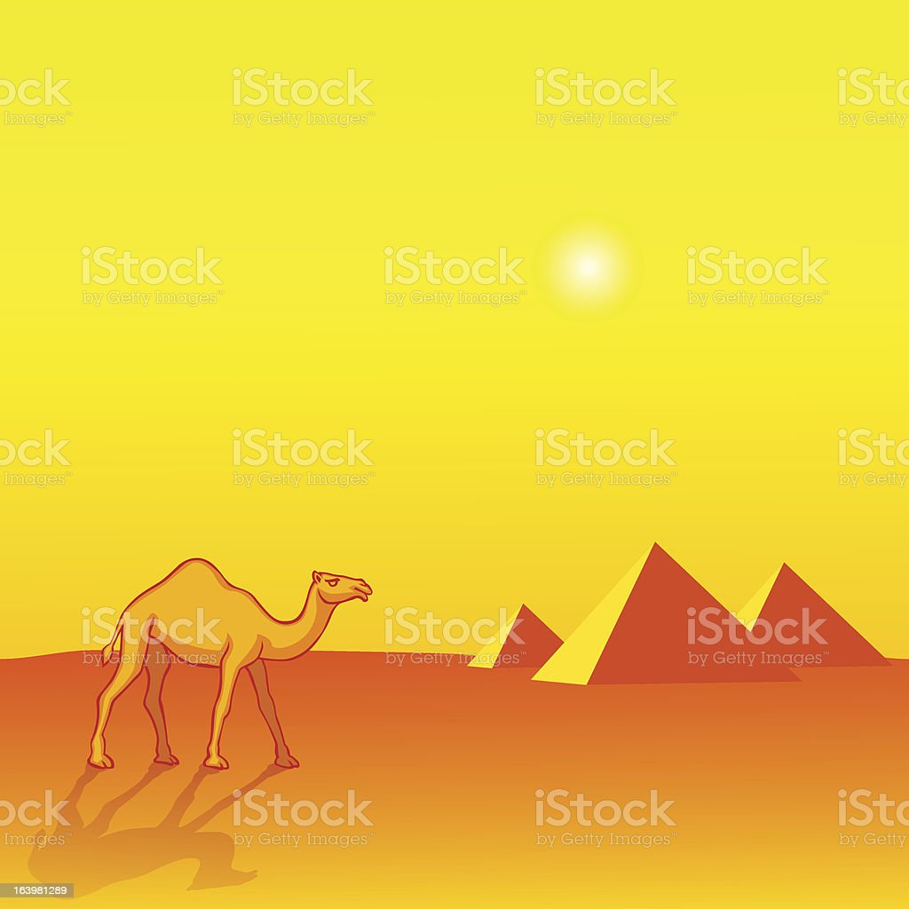 Camel and Pyramids royalty-free stock vector art