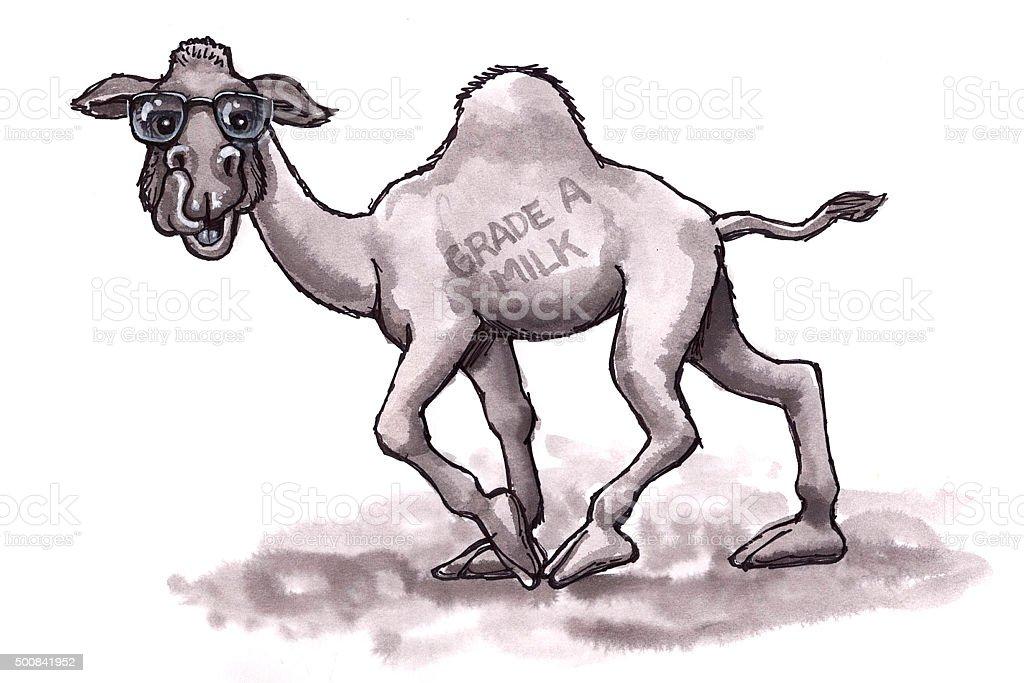 Kamel (Comic Lizenzfreies vektor illustration