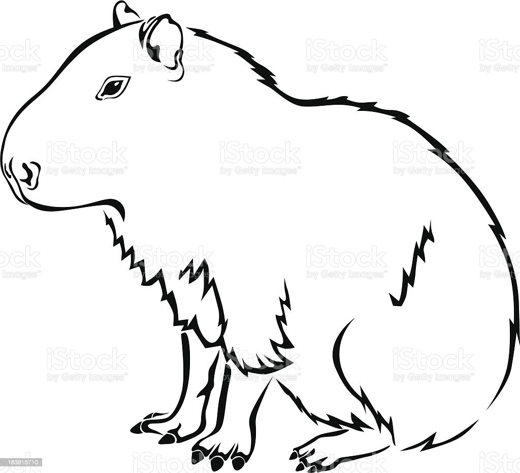 capybara royalty-free stock vector art
