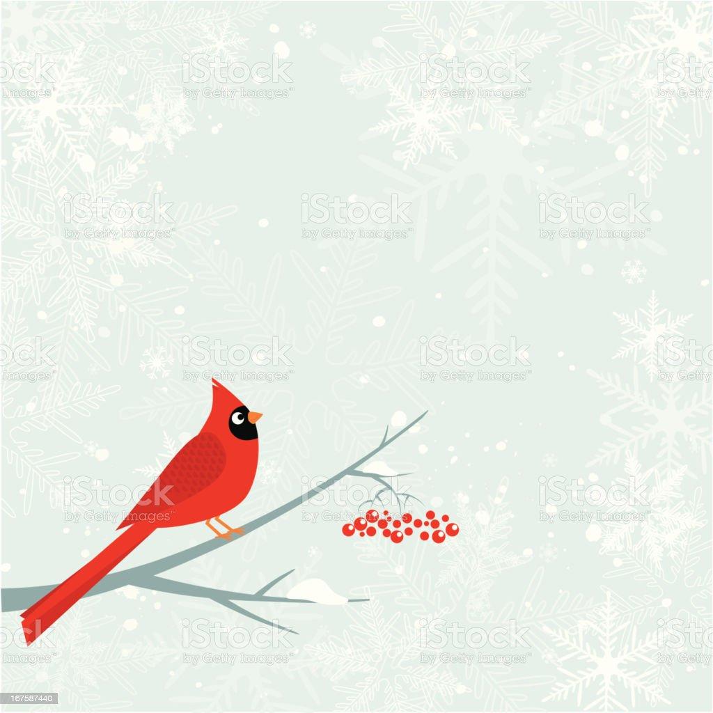 Cardinal bird. Winter vector art illustration