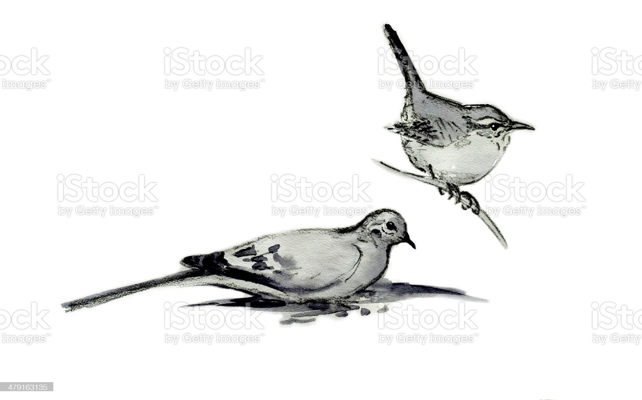 Carolina Wren and Mourning Dove royalty-free stock vector art