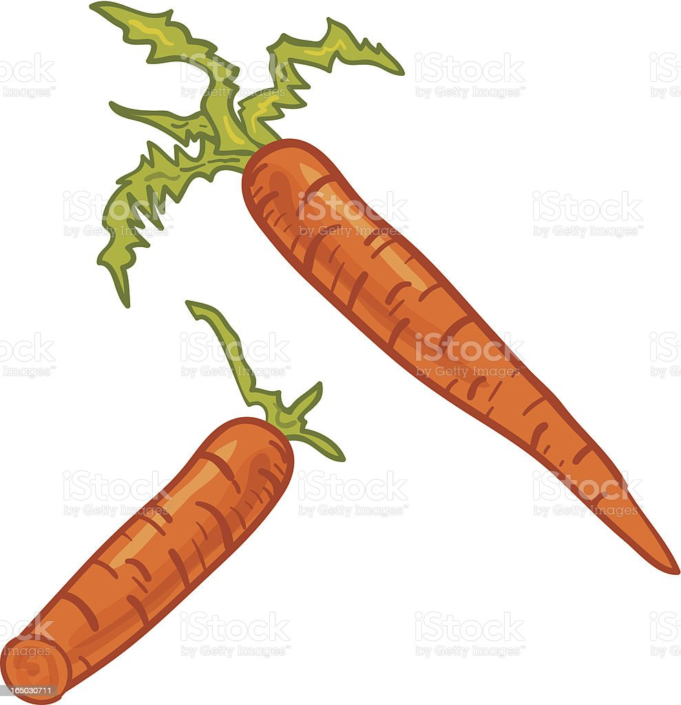 Carrots royalty-free stock vector art