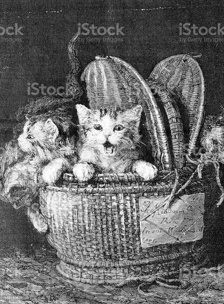 Cats in basket royalty-free stock vector art