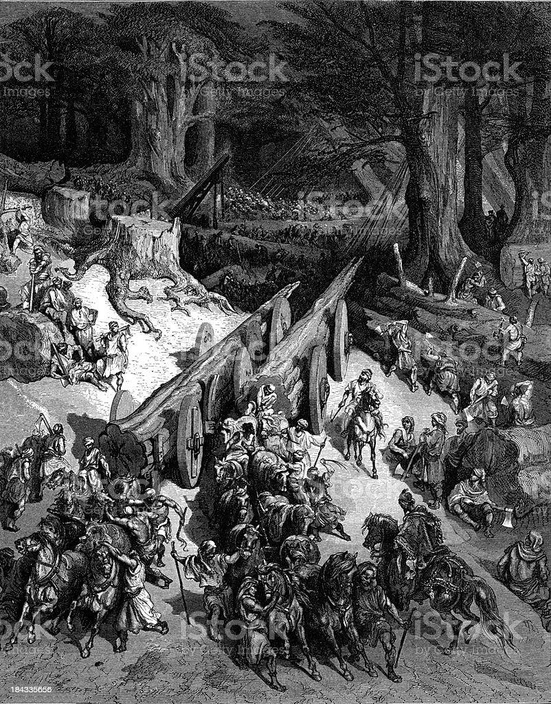 Cedars of Lebanon for the Temple vector art illustration