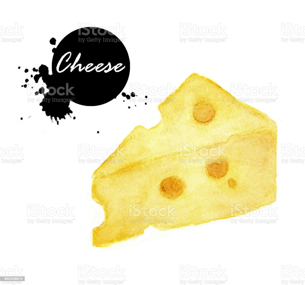 Cheese on a white background. vector art illustration