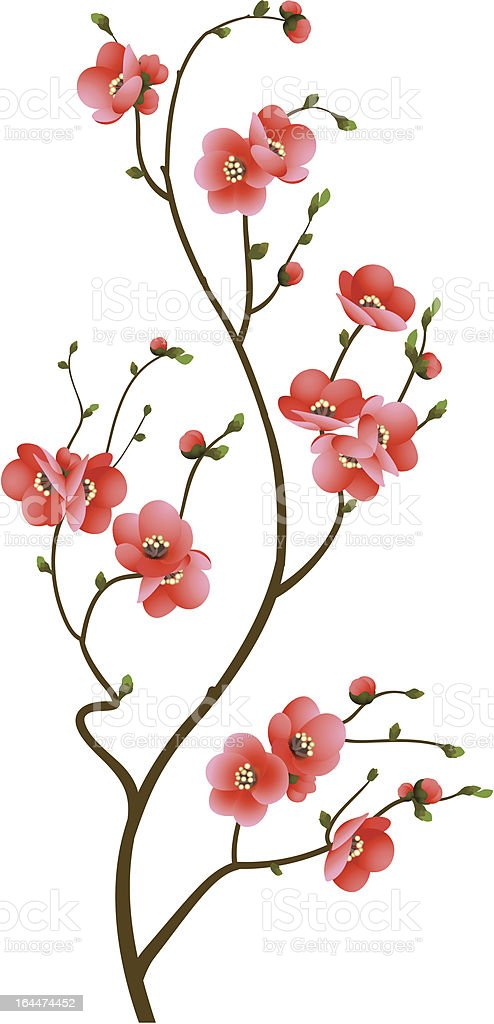 cherry blossom branch abstract background royalty-free stock vector art