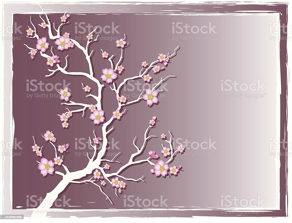 Cherry Blossoms with grunge frame royalty-free stock vector art