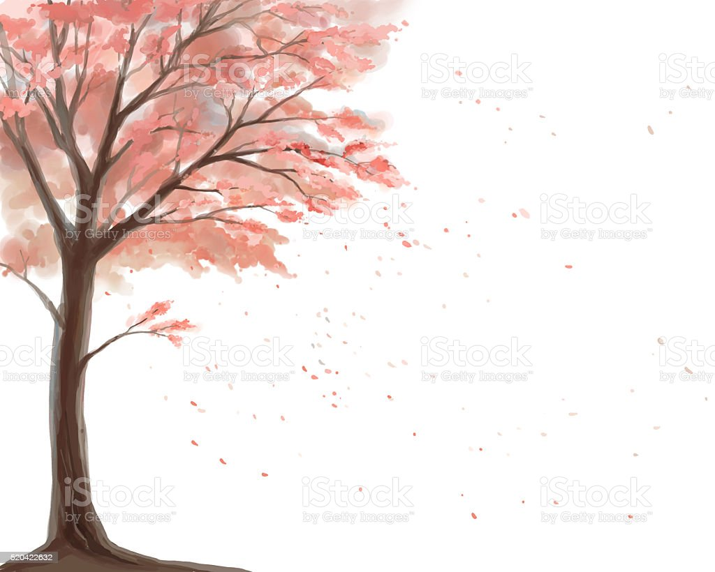 cherry tree on a white background vector art illustration