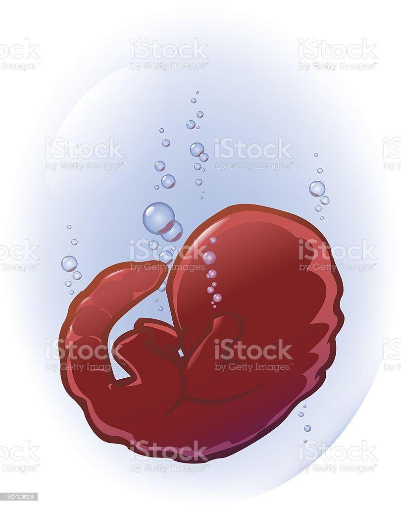 Chimera fetus vector art illustration