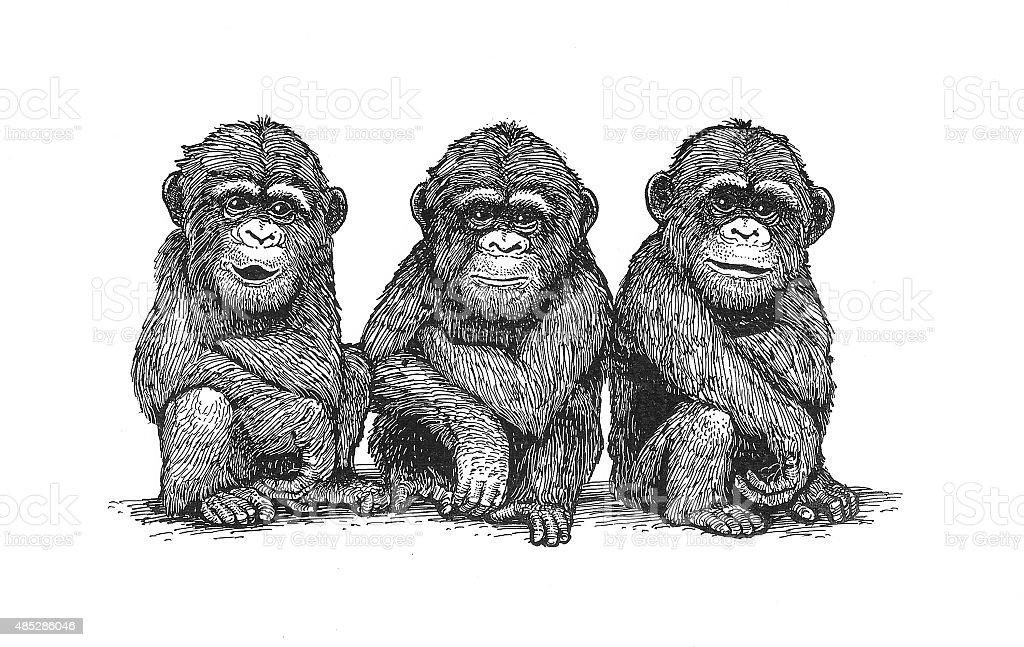 Schimpansen Lizenzfreies vektor illustration