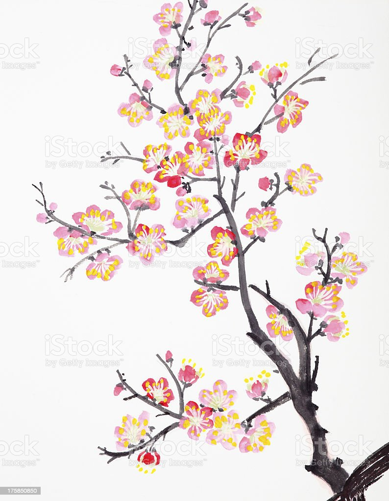 Chinese painting of flowers, plum blossom vector art illustration