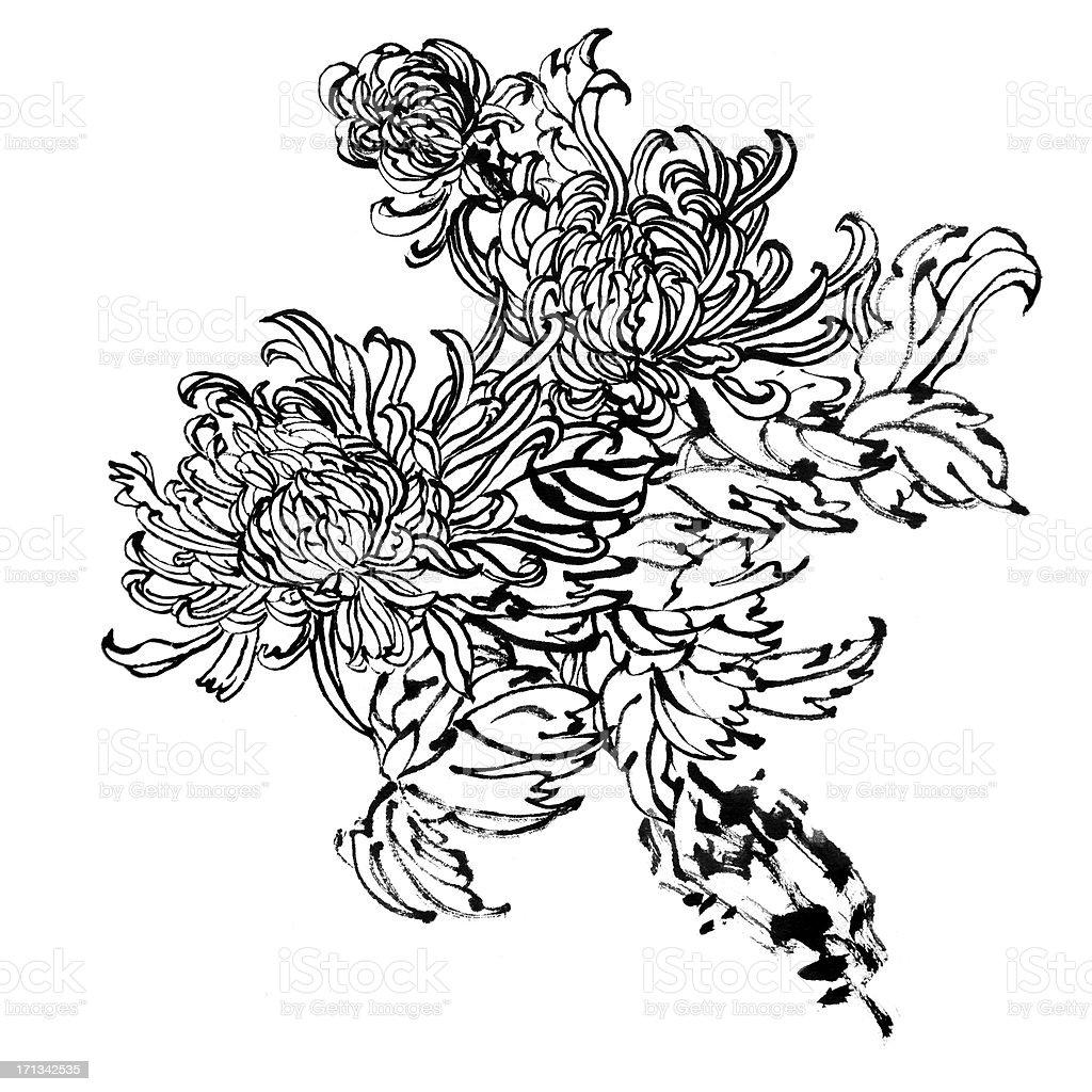 chrysanthemum stock vector art 171342535 istock