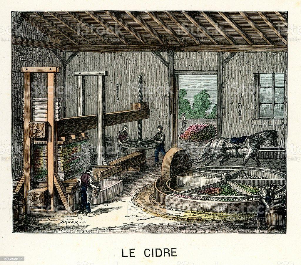 Cider making in France vector art illustration