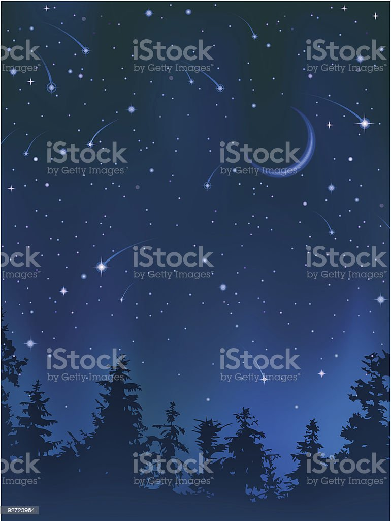 Clear night sky over the forest vector art illustration