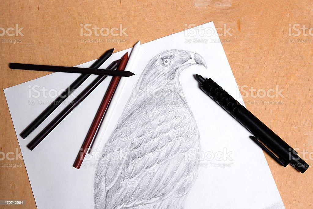 Embrague con grafito lápiz de dibujo hawk. illustracion libre de derechos libre de derechos