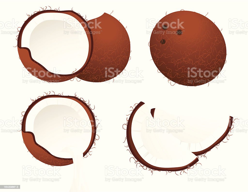 Coconut set. royalty-free stock vector art