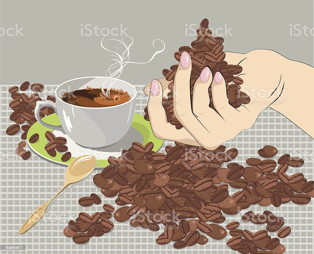 coffee beans in the palm royalty-free stock vector art
