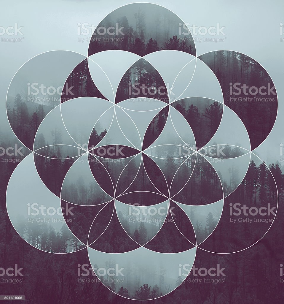 Collage with the forest and flower of life vector art illustration
