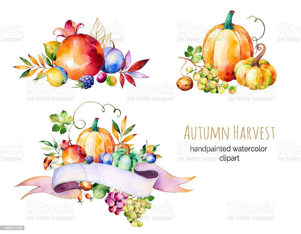 Colorful autumn collection with fall leaves,branches,berry,blackberry,mushroom vector art illustration