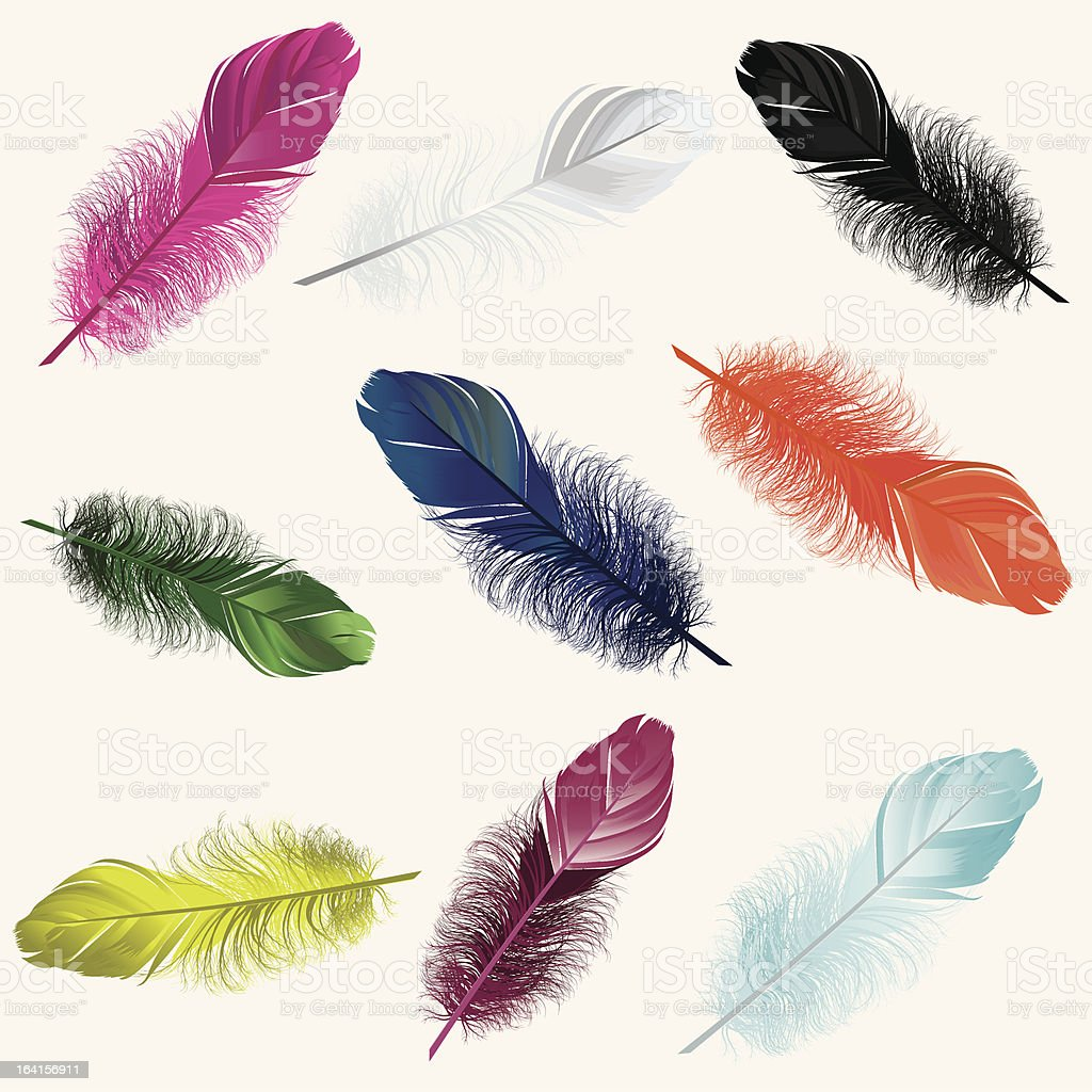 Colorful Feathers vector art illustration